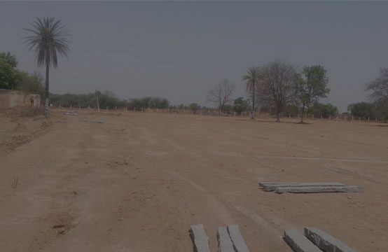 Agriculture Land for Sale in Mahabubnagar – 1193