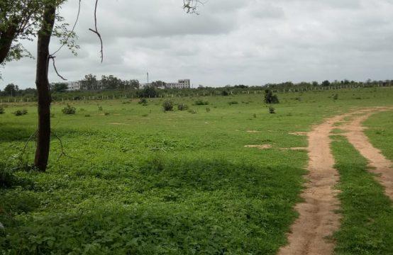 1284 – Buy Agricultural Land for Sale
