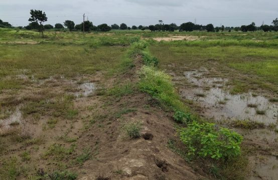 1349 – Agriculture Property with Land for Sale