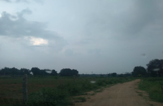 Agriculture Land for Sale in Siddipet