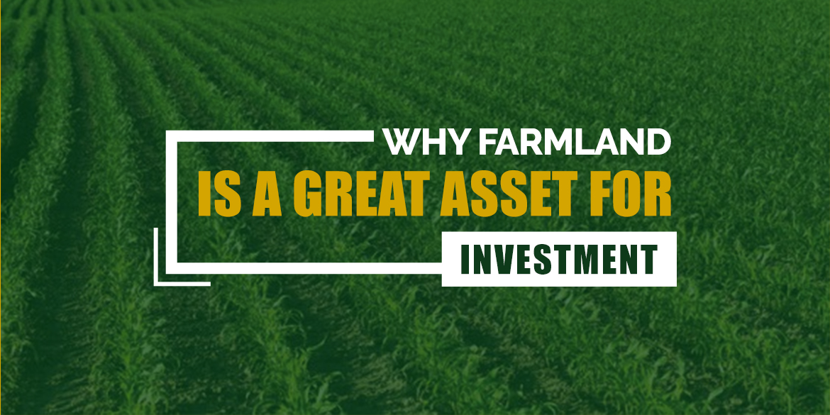 Farmland is a great Asset for Investment