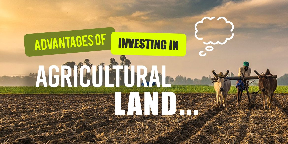 Advantages of Investing in Agricultural Land